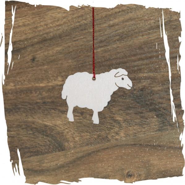 Kleines schauendes Schaf, natur